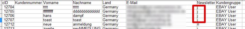 Flatratenewsletterimport: aktivierte Newsletterabonnenten sichtbar an 'j' für ja in Spalte Newsletter