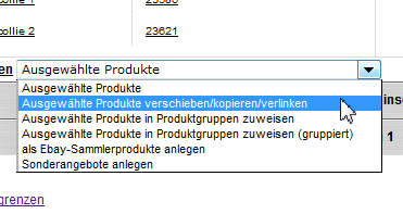 Master-Slave-Produkte: Ausgewählte Produkte verschieben-kopieren-verlinken (YES-System)